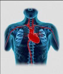Cardiac Surgery Treatment Service