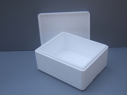 Thermocol Boxes for Vaccines