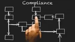 Corporate Compliance Advisory Services, India, Application Usage: One Per Client