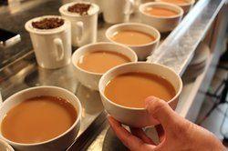 Sensory Tea Testing