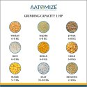 Aatomize S101 Orange Flour Mill