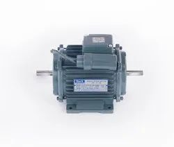 Double Shaft Motor - Dual Shaft Motors Latest Price