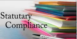 Private Limited Statutory Compliance Service