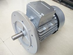 Single Phase Electric Gear Motor