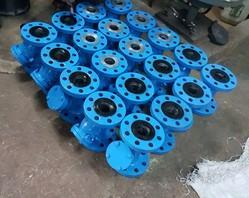 SS Strainer Flanged