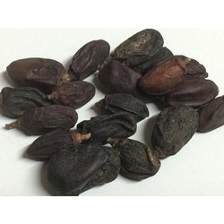 Neem Dry Fruits