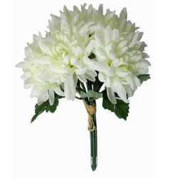 Chrysanthemum Flower Bunch