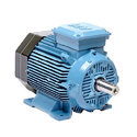 AC Squirrel Cage Induction Motor With Star Delta Starter