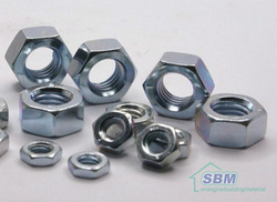 SS Hex Nut, Size: All Sizes