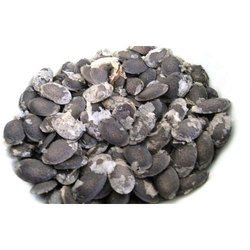 Loofah Seeds