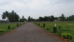Penamaluru Open Residential Plots 100 Yards Besides Houses Vijayawada