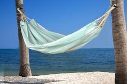 Light Green Hammocks