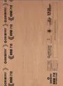 Century Bond 710 Plywood
