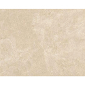Vishwas Ceramica 2018 Ve Matt Series Floor Tiles, Size: 600 X 1200mm