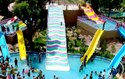 Family Slides