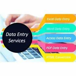 Offline Healthcare Data Entry Service
