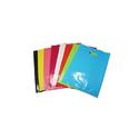 PP Polythene Bags for Retail Store