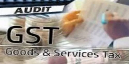 Monthly Online Tax Audit Service, Local Area