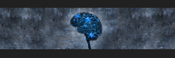 Neuro Sciences Treatment Service