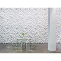 Stucco Plaster