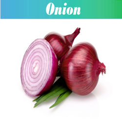 A Grade Gujarat Red Whole Onion, Packaging Size: 20 Kg and 30 Kg, Onion Size Available: Medium