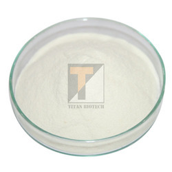 Sodium Caseinate at Best Price in India
