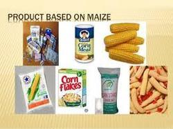 Maize Project Reports