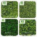 Green Wall Tile
