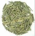 Sinhal Raw Herb Lemongrass - Cymbopogon Citratus, Whole Plant, Grade Standard: Medicine Grade