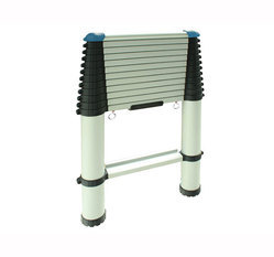 11 Steps Telescopic Ladder