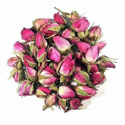 Sinhal Pink Rose Buds