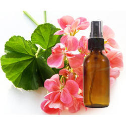 Geranium Hydrosol Floral Water