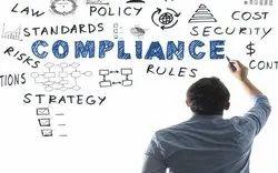 Private Limited Company Law Compliance Service