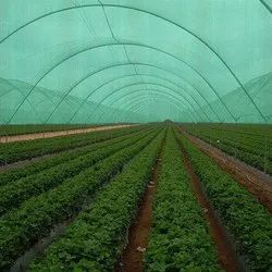 Nylon Coated Green Shade Net, Packaging Type: Roll