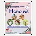 Multistrain Water Soluble Probiotic Powder
