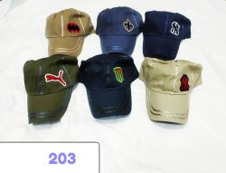 Cotton Stylish Looks Embroidery Caps And Hats Code 203