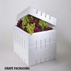 Thermocol Fruits Packaging Boxes