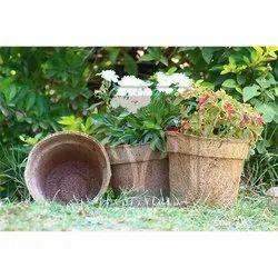 Coco Pot 10 Inch