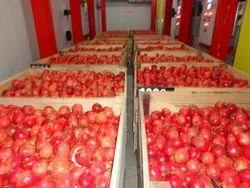 pomegranate Cold Storage