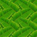 Banana Leaf Green Color Film