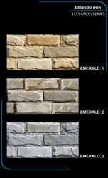 Exterior Wall Designs Tiles