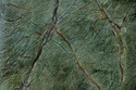 Rainforest Green Sandstone