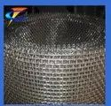 Fly Insect Mesh