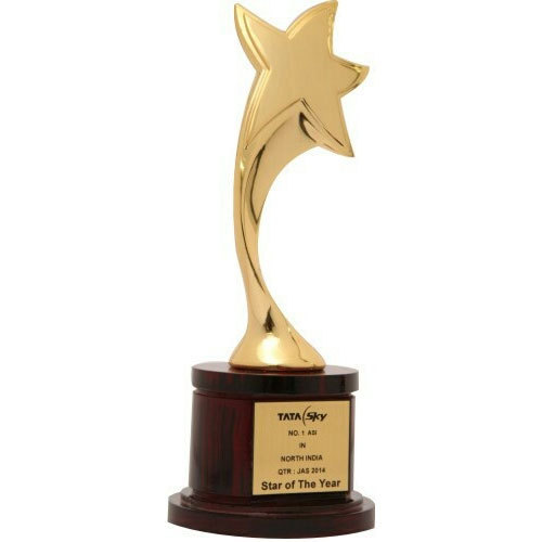 Star Design Metal Trophy