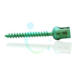 Spine Polyaxial Screw