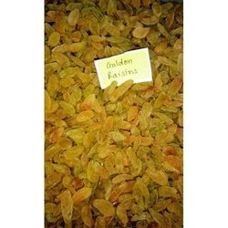 Nisarg Foods Golden Dried Raisins, Packaging Type: Plastic Box, Packing Size: 100gm-5kg