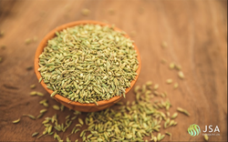 Yellowish-green Seeds Fennel Seeds, Pack Size: STD25Kgs/50Kgs PP BAGS