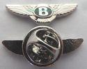 Pilot Pins