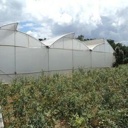 Greenhouse Film Manufacturer and Supplier in Tamil