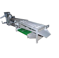 Automatic Cashew Cutting Line